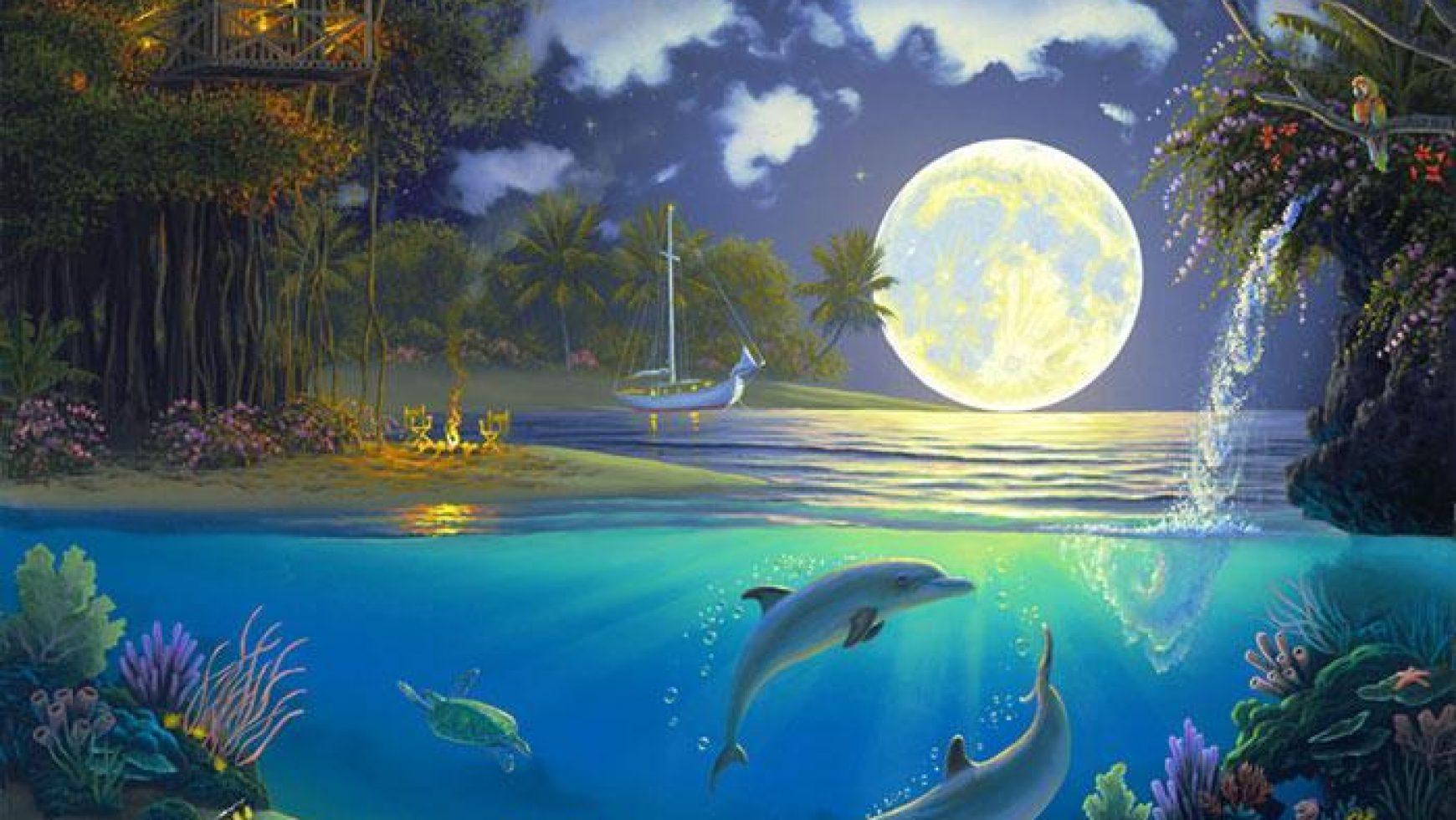De Witte Tempel 25| Reactivatie van De Dolfijnentempels